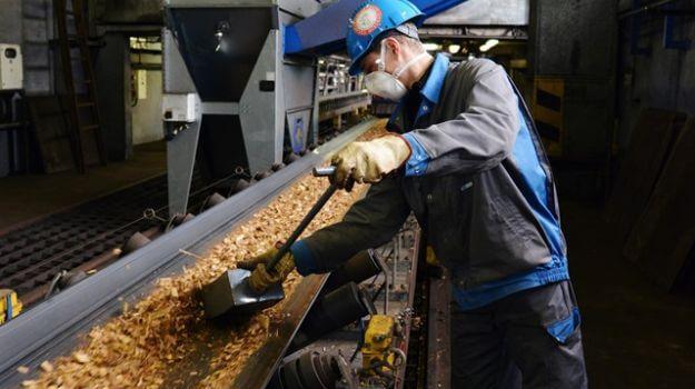 Zaposleni vzorči lesne sekance na transportnem traku - zajem s traku.